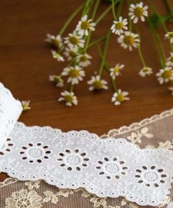 Galloons & Insertion Lace